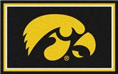 Fan Mats University of Iowa 4x6 Rug