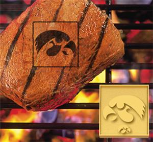 Fan Mats University of Iowa Fan Brands