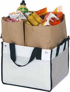 Picnic Plus Recycled Resins Reuze Car Tote