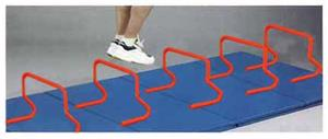 Epic Speed Steps / Hurdles (1-Each)