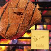 Fan Mats New England Patriots Fan Brands