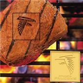 Fan Mats Atlanta Falcons Fan Brands
