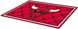 Fan Mats Chicago Bulls 5' x 8' Rugs
