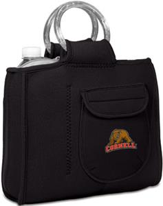 Picnic Time Cornell University Milano Lunch Tote