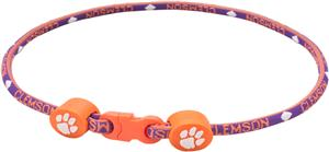 Eagles Wings NCAA Clemson Titanium Sport Necklace