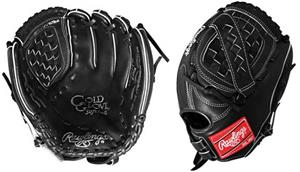 Rawlings Gold Fastpitch Softball Glove