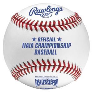 Rawlings R100NAIA Official NAIA Baseballs-Dozen
