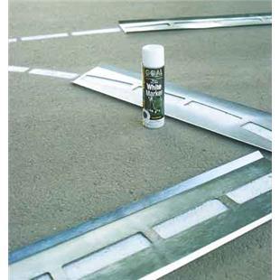 Bison 18oz Turf/Pavement White Spray Marking Paint