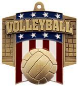 Hasty Awards Patriot Volleyball Medal M-776V