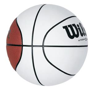 Wilson Mini Autograph Basketballs