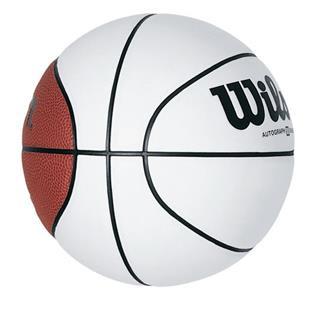 Wilson Mini Autograph Basketballs