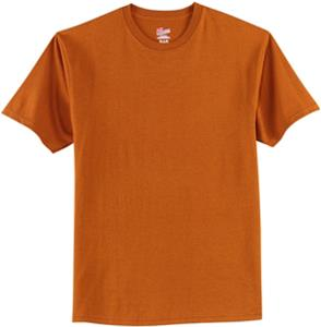 Hanes Adult Tagless 100% Cotton T-Shirts