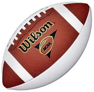 Wilson NCAA Mini 3-Panel Autograph Football
