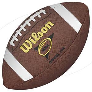 Wilson NCAA Composite Footballs