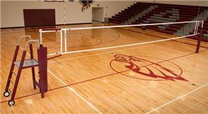 Blazer Volleyballl Ace Power Aluminum System