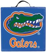 COLLEGIATE Florida Gators Seat Cushion
