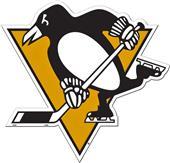 "BSI NHL Pittsburgh Penguins 12"" Vinyl Magnet"