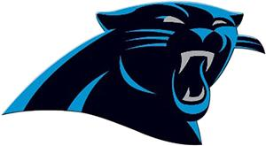 "BSI NFL Carolina Panthers 12"" Die Cut Car Magnet"