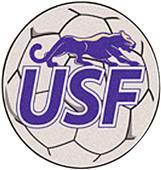 Fan Mats University of Sioux Falls Soccer Ball Mat