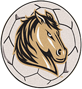 Fan Mats Southwest Minnesota State Soccer Ball Mat