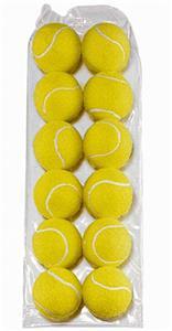 Martin Sports Bag of 12 Tennis Balls