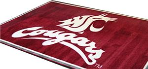 Fan Mats Washington State University 4x6 Rug