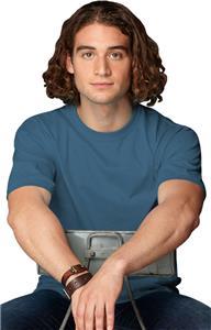 Anvil Heavyweight Men's T-Shirts