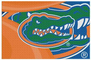 Northwest NCAA Florida Gators Cosmic Rugs
