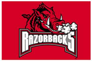 "Northwest NCAA Arkansas Razorbacks 20""x30"" Rugs"