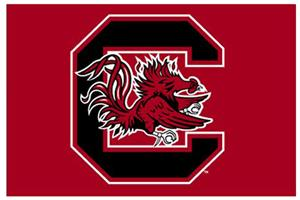 "Northwest NCAA South Carolina 20""x30"" Rugs"