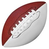 "Mini Size 8.5"" Autograph Collectible Footballs"