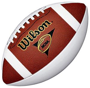 Wilson NCAA Official 3-Panel Autograph Footballs