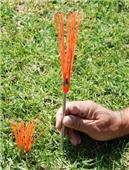 Fold-A-Goal Whiskers for Field Markings Soccer