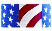 Gill Athletics USA Graphic Pole Vault Grip Tape
