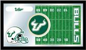 Holland University South Florida Football Mirror