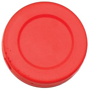 Champion Sports Hollow Plastic Hockey Puck