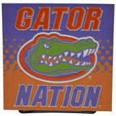 Illumasport Florida Gators Light Up Car Sticker