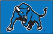 Fan Mats University at Buffalo Starter Mat