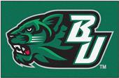 Fan Mats Binghamton University Starter Mat