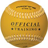 Pro Nine Weighted Training Balls - DZ