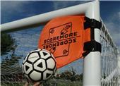 Bison ScoreMore Corner Kick Training Aid (set/4)