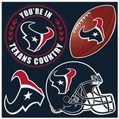 NFL Houston Texans 4 Piece Magnet Set