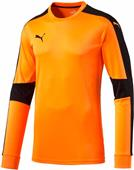Puma Mens Goalie Triumphant Soccer Jersey