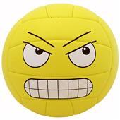 Baden Synthetic Leather Mini Emoji Volleyballs