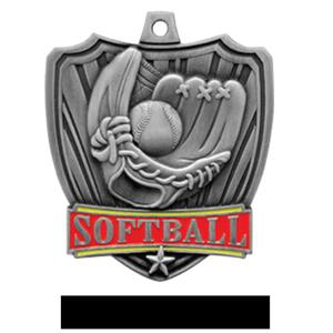 SILVER MEDAL / BLACK RIBBON