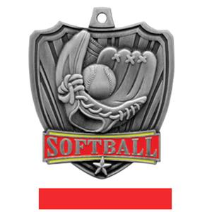 SILVER MEDAL / RED RIBBON