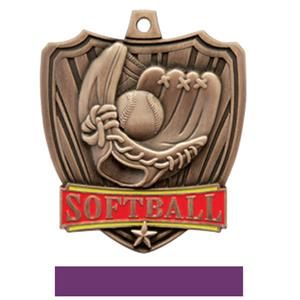 BRONZE MEDAL / PURPLE RIBBON