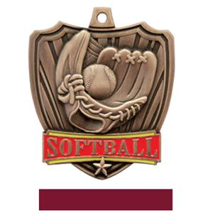 BRONZE MEDAL / MAROON RIBBON