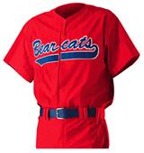 Alleson PROWJY Youth Full Button Baseball Jerseys