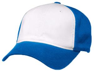 WHITE PANEL/ROYAL CAP